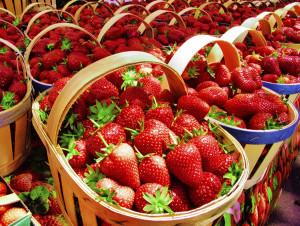 strawberryyyy